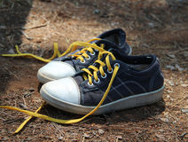 Pair of old retro sneakers Stock Photography