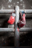 Pair of old and tattered boxing gloves. A pair of well used, dusty Muay Thai boxing gloves hanging against a grungy boxing ring Royalty Free Stock Image