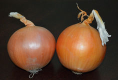 Pair of Onions. With Skin Stock Photo