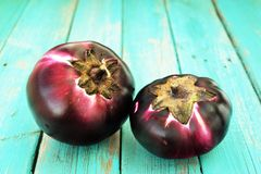 Pair of organic eggplants on turquoise background Royalty Free Stock Images