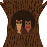 A pair of owls in the hollow. Stock Photo
