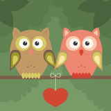 Pair of owls on tree and heart Stock Photos