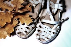 A pair of pale pastel blue time-worn sandals standing next to a branch of leaves on white background. royalty free stock photos