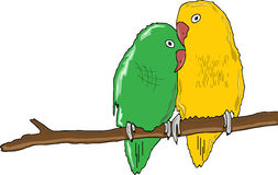 A pair of parrots. Green and yellow royalty free illustration