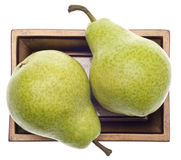 Pair of Pears on a Golden Dish Royalty Free Stock Images