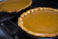 Pair pieces of Pumpkin Pie Freshly Baked on Oven in the Kitchen Stock Photography