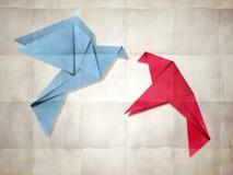Pair of pigeons vector illustration
