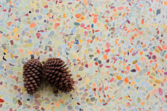 A pair of pine cones were put on the colorful floor. Royalty Free Stock Photos