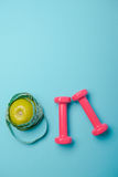 Pair of pink 1 kg dumbbells on blue background Stock Photos
