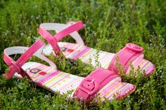 Pair of pink sandals Stock Image