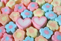A Pair of Pink and White Heart Shaped Marshmallow Among Lined Up Pastel Flower Shaped Marshmallow Candies. Valentine concept stock photo