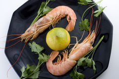 Pair of prawns stock photo