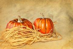 Pair of Pumpkins Royalty Free Stock Image