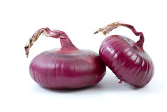 Pair of purple onions. Isolated on the white background Stock Photography