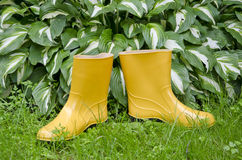 Pair rain rubber yellow boots on  garden grass Royalty Free Stock Photo