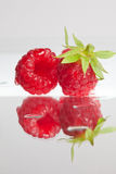 Pair of raspberries Stock Image