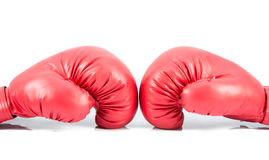 Pair of red leather boxing gloves isolated Royalty Free Stock Photo