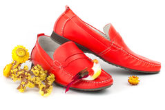 Pair of red male shoes. Pair of fashion male red shoes with little bird isolated over white Royalty Free Stock Photos