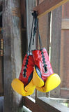Pair of red-yellow boxing gloves Hanging Royalty Free Stock Photography