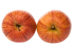 Pair of reddish apples Royalty Free Stock Image