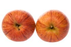 Pair of reddish apples Royalty Free Stock Image