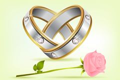 Pair of Rings with Rose Stock Image