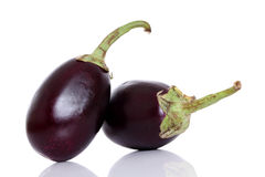 Pair of Ripe eggplant Stock Photography