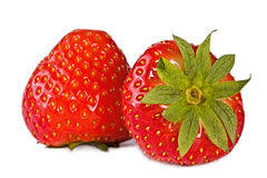 Pair  ripes strawberry Stock Images