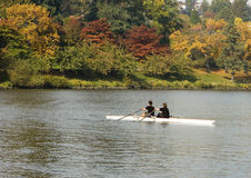 Pair Rowing In Autumn Royalty Free Stock Image