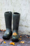 Pair of rubber boots with autumn leaves Stock Photo