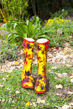 Pair of Rubber Boots Stock Images
