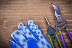 Pair of safety gloves metal garden pruner clippers gardening con Stock Photo