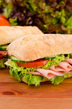 Pair of sandwiches Royalty Free Stock Photography