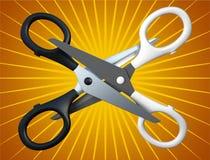Pair of the scissors Stock Image