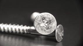Pair of screws. A pair of silver screws Stock Photos