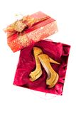 Pair of shoes in box Stock Images