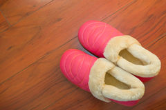 Pair of shoes for lady Royalty Free Stock Photo
