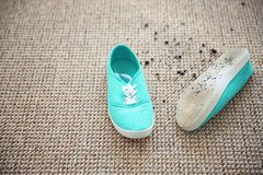 Pair of shoes with mud. On carpet Royalty Free Stock Photography