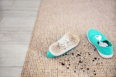 Pair of shoes with mud. On carpet Royalty Free Stock Images