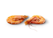 Pair of shrimp Royalty Free Stock Photography