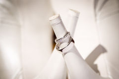 A pair of silver rings Stock Photo