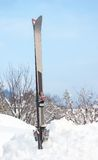 Pair of ski in the snow standing vertically Royalty Free Stock Image