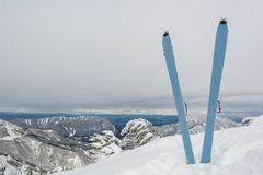 Pair of skis in snow Royalty Free Stock Image