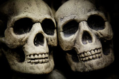Pair of Skulls Stock Images