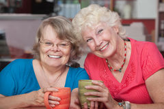 Pair of Smiling Friends Stock Images
