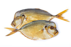 Pair smoked fish Vomers Stock Images