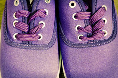 Pair of sneakers Stock Images