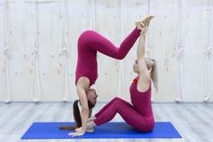 Pair sporty yoga women doing exercise on gray stylish background. Couple yoga pose royalty free stock photography