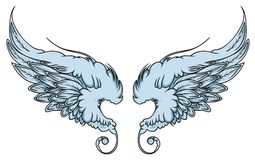 Pair of spread out eagle bird or angel wings vector illustration