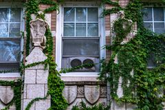 A Pair of Gargoyles on the side of an Old Urban Apartment Building stock photography